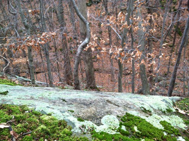 overlooking upper gorge