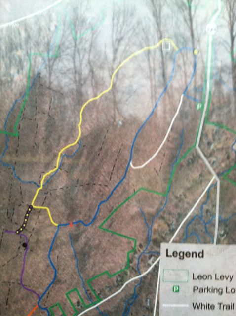 photo of trail map - I walked the white and blue rubber band shaped trail over to the right - twice